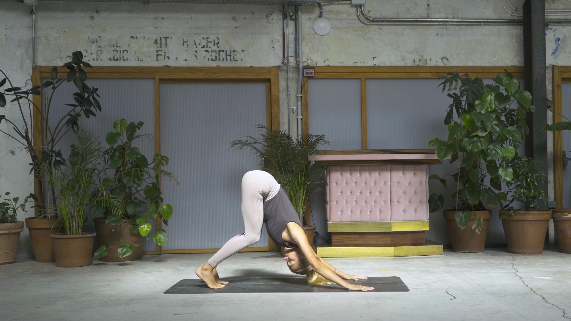 yoga principiantes 9
