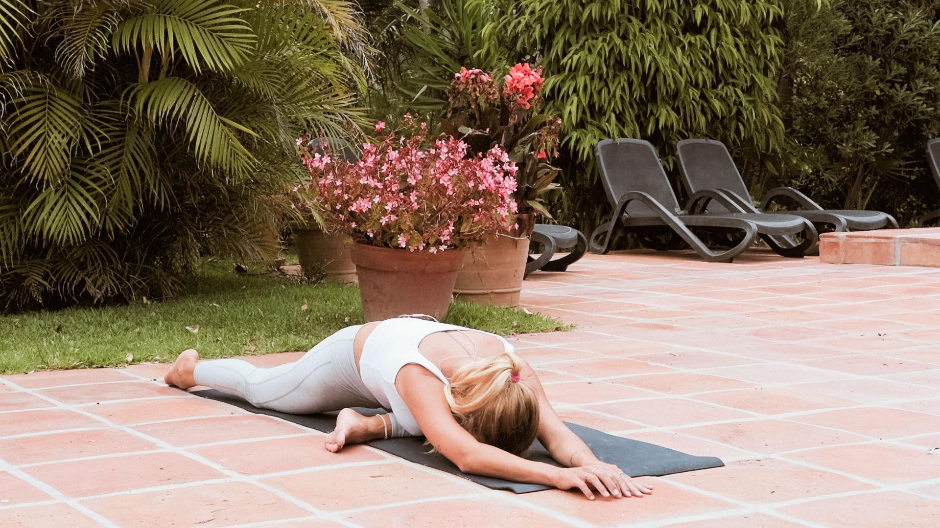 paloma flexibilidad