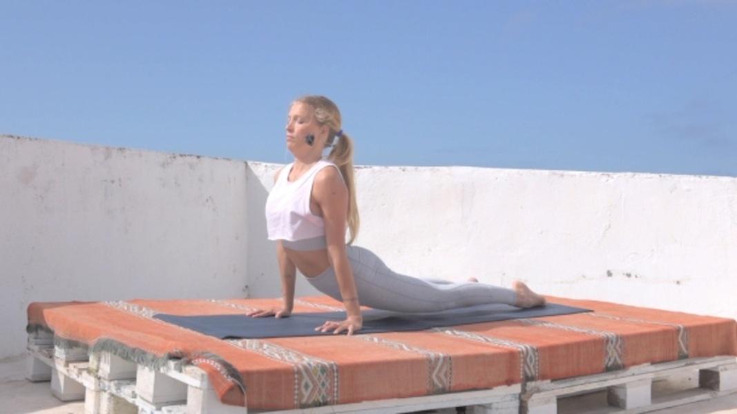 cobra flexibilidad