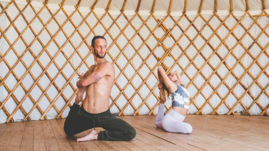 descargar el manual de yoga y ayurveda en pdf